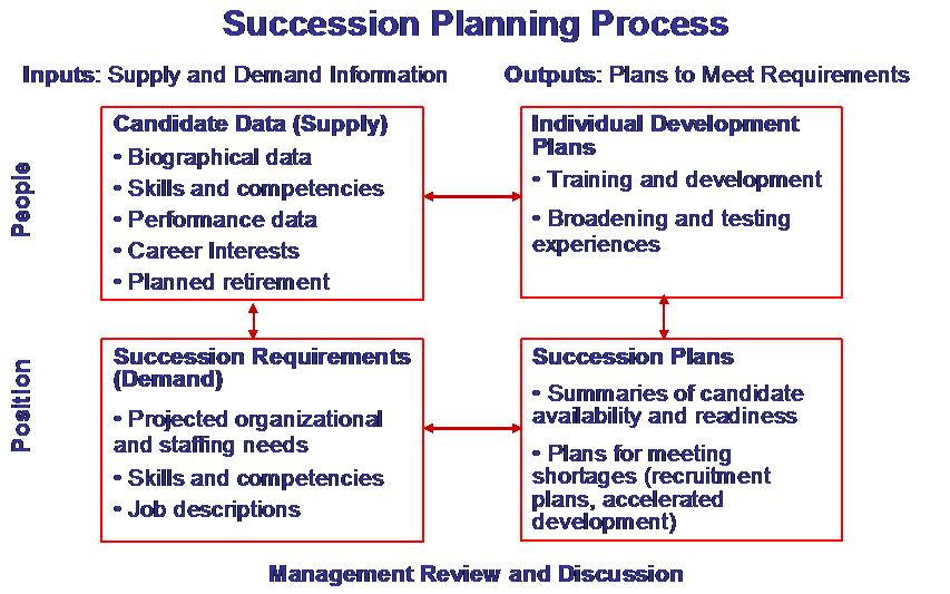 Succession planning mcconnell consulting inc for Management succession plan template